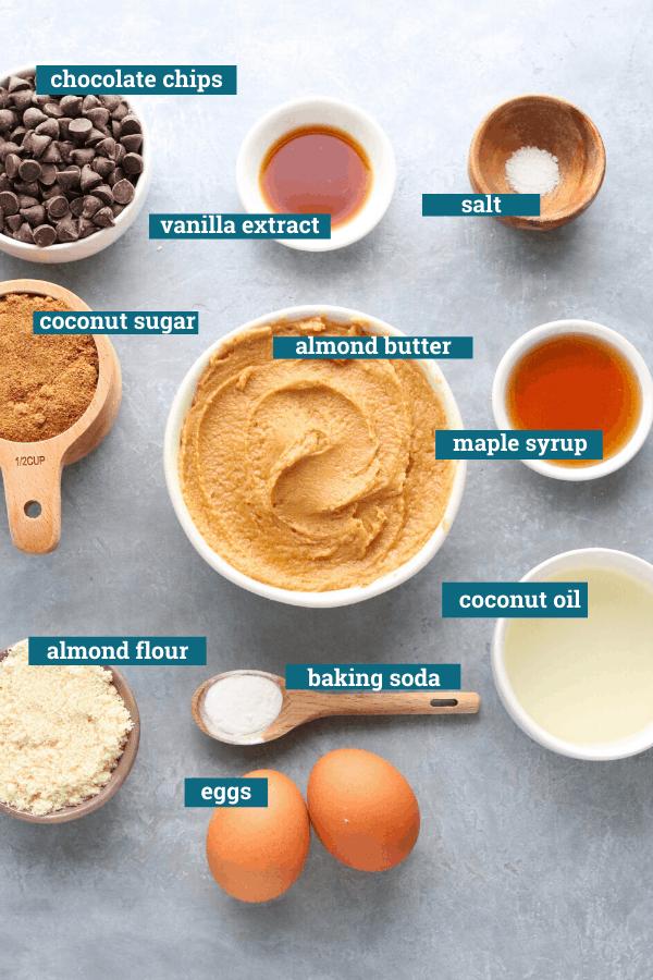 Healthy Chocolate Chip Blondies Recipe