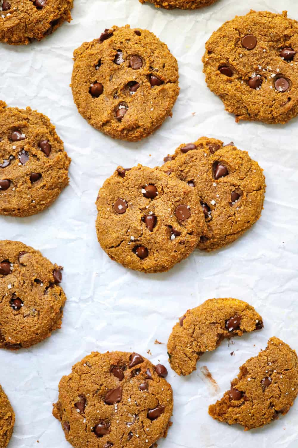Pumpkin cookies with chocolate chips in them scattered on white parchment paper