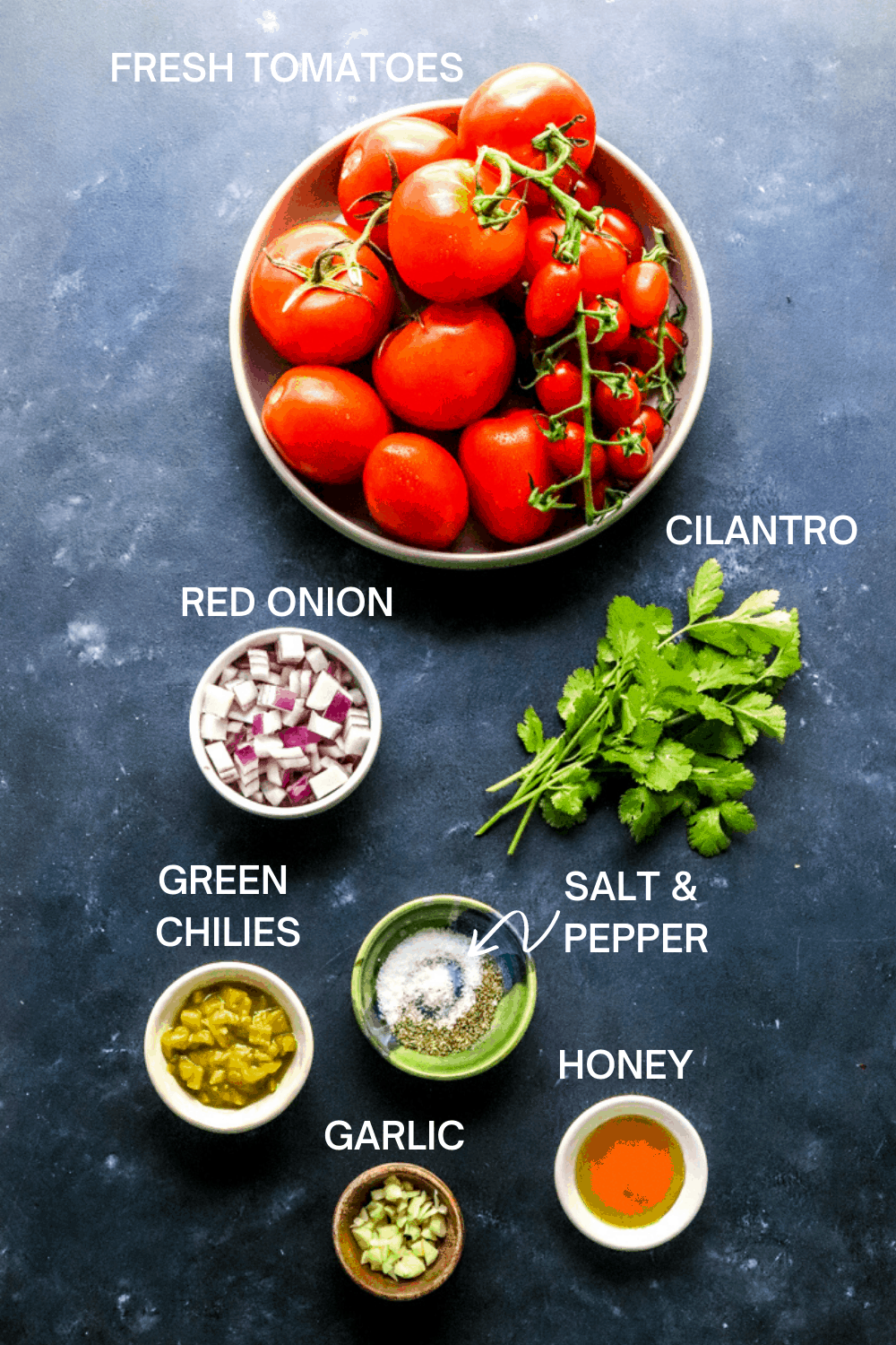 Bowl of fresh whole tomatoes, bunch of cilantro, bowl of chopped red onion, bowl go green chilies, bowl of salt and pepper, honey and bowl of garlic on a dark blue surface