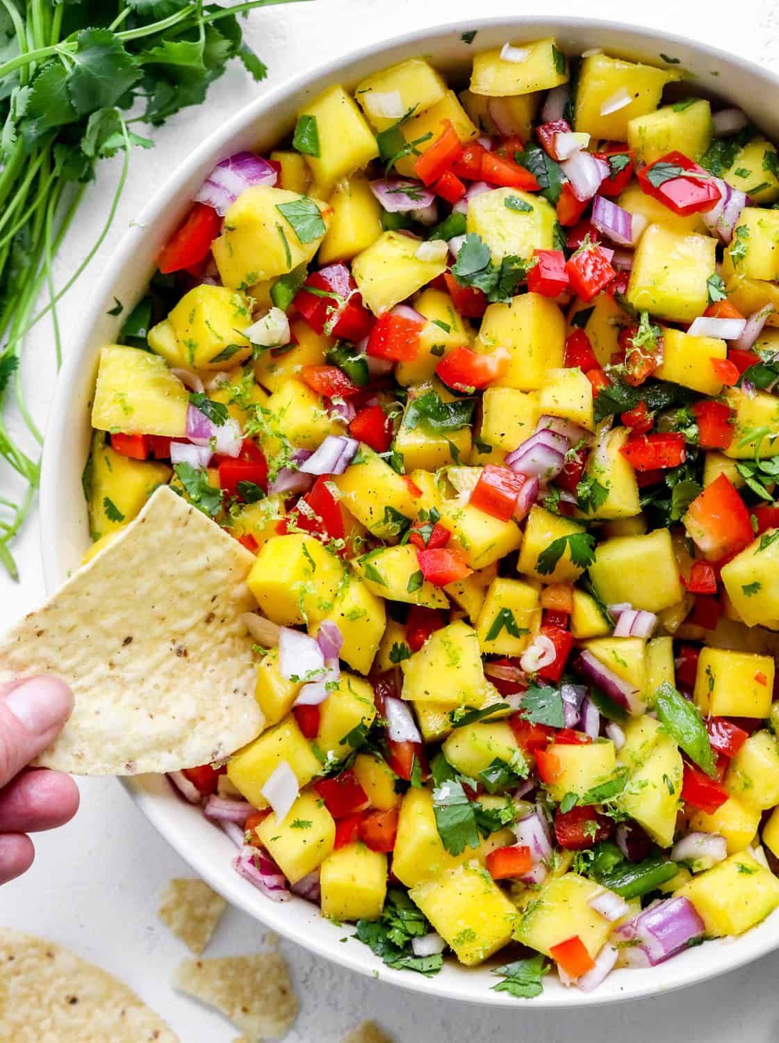 Close up of mango salsa in a round bowl with a hand dipping a tortilla chip into the salsa with a bunch of cilantro behind it.