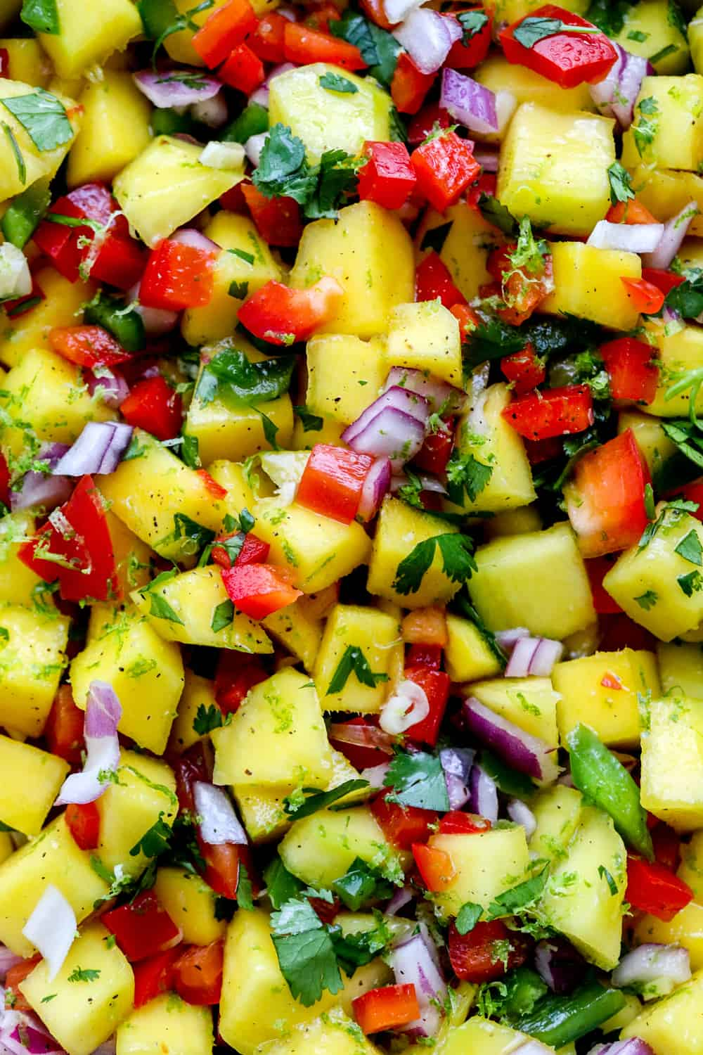 Close up of diced mangoes mixed with diced red and green peppers, purple onion and cilantro.