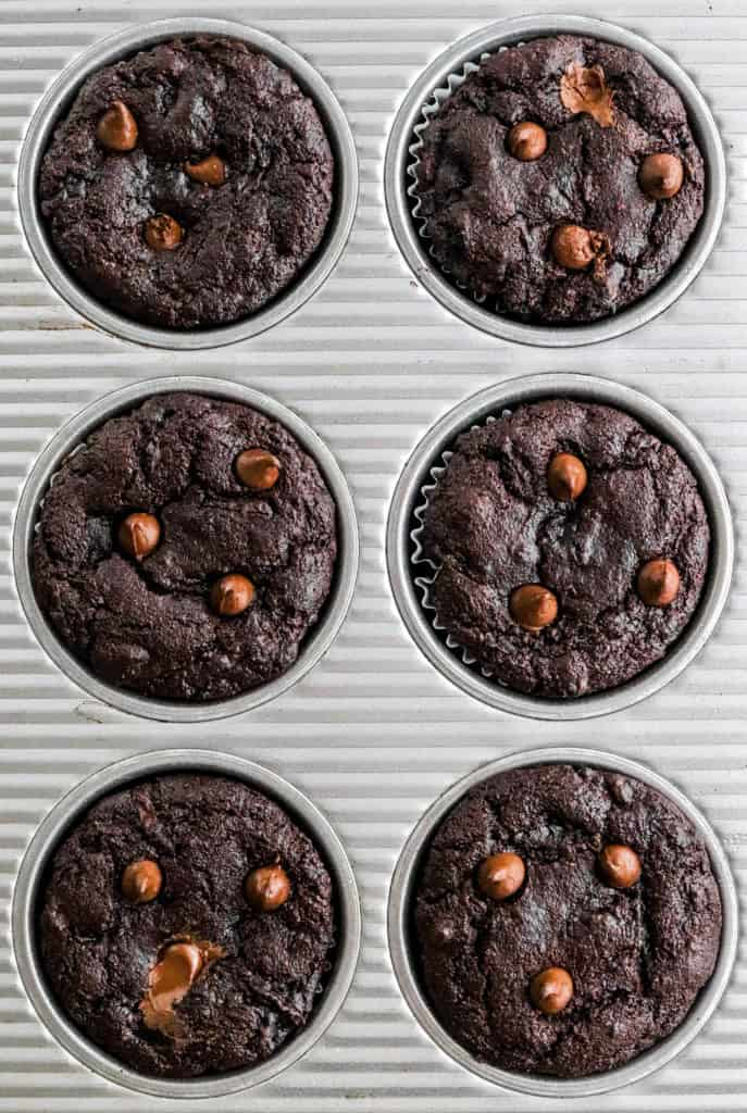 Dark chocolate baked muffins in a grey muffin pan with chocolate chips on top of the muffins