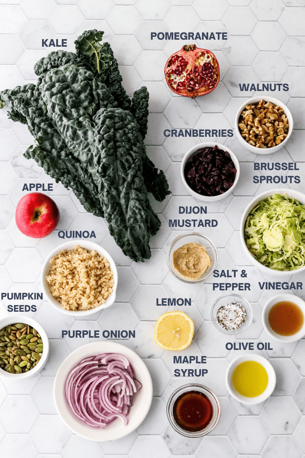 Bunch of kale, sliced pomegranate, bowls of walnuts, dried cranberries, quinoa, sliced Brussel sprouts. vinegar and olive oil around it with a whole apple and bowl of pumpkin seeds and sliced red onion in front of it.