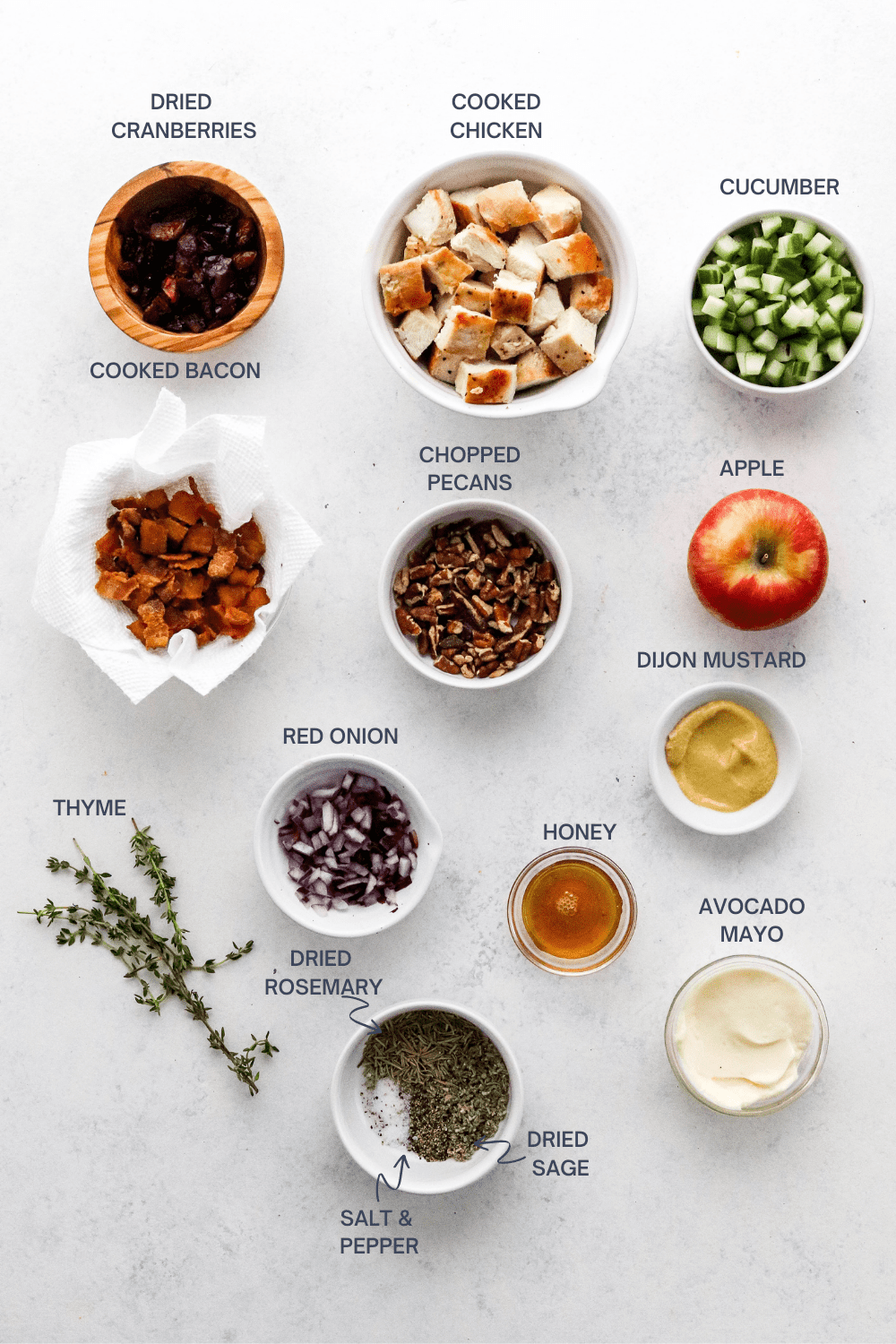 A bunch of round small bowls on a white surface filled with various ingredients like cranberries, cubed chicken, diced cucumber, chopped, cooked bacon, chopped pecans, an apple, chopped red onion, mustard, honey and a sprig of thyme with labels over each ingredient.